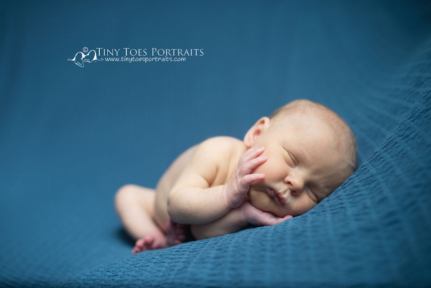 newborn boy on blue backdrop
